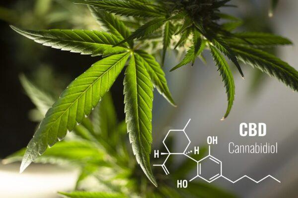kemijska formula CBD-ja